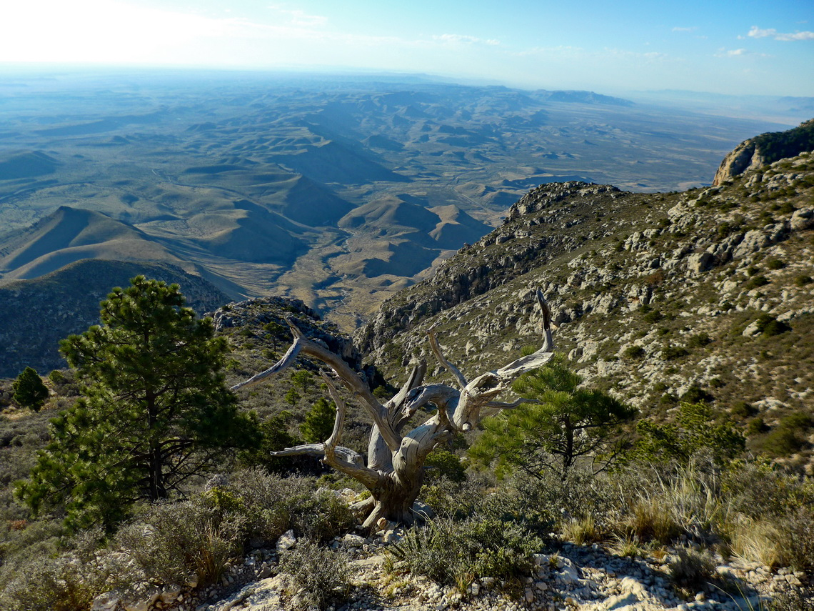 Desert from Guadalupe Peak