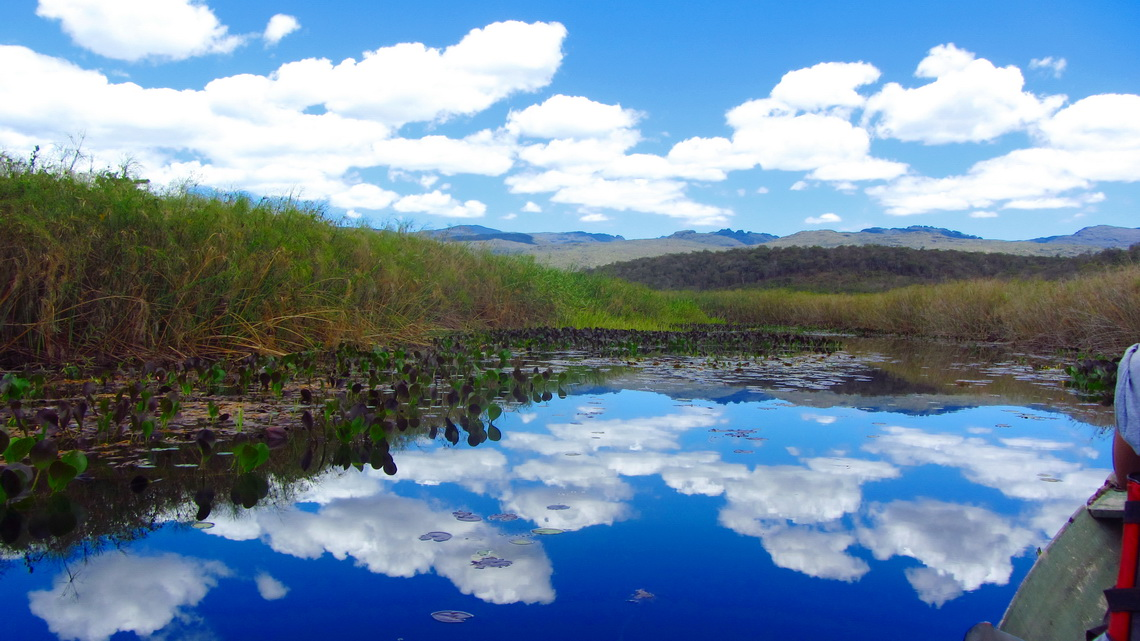 In the swamps of Marimbus with the mountains of the Chapada Diamantina
