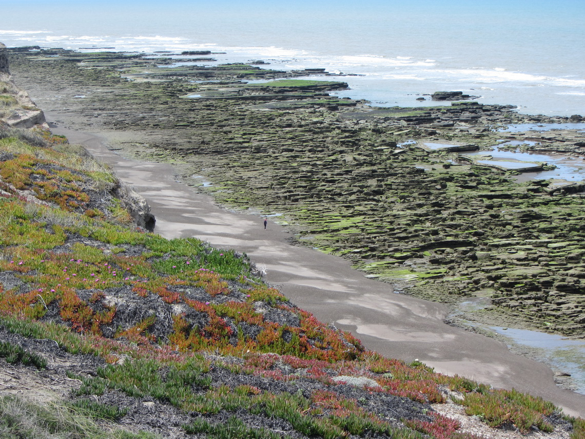 Beach of La Loberia during low tide