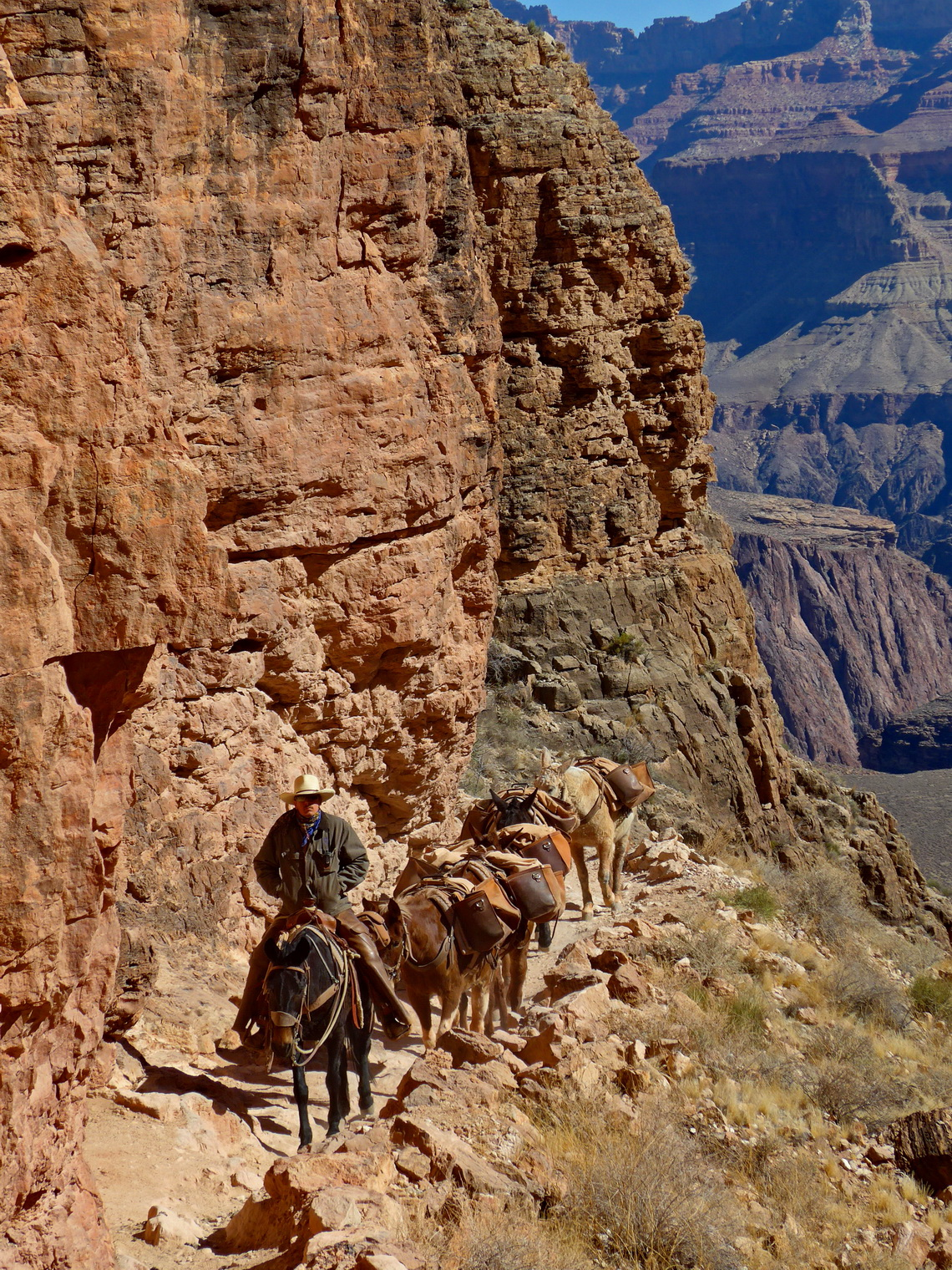 Traffic on South Kaibab Trail