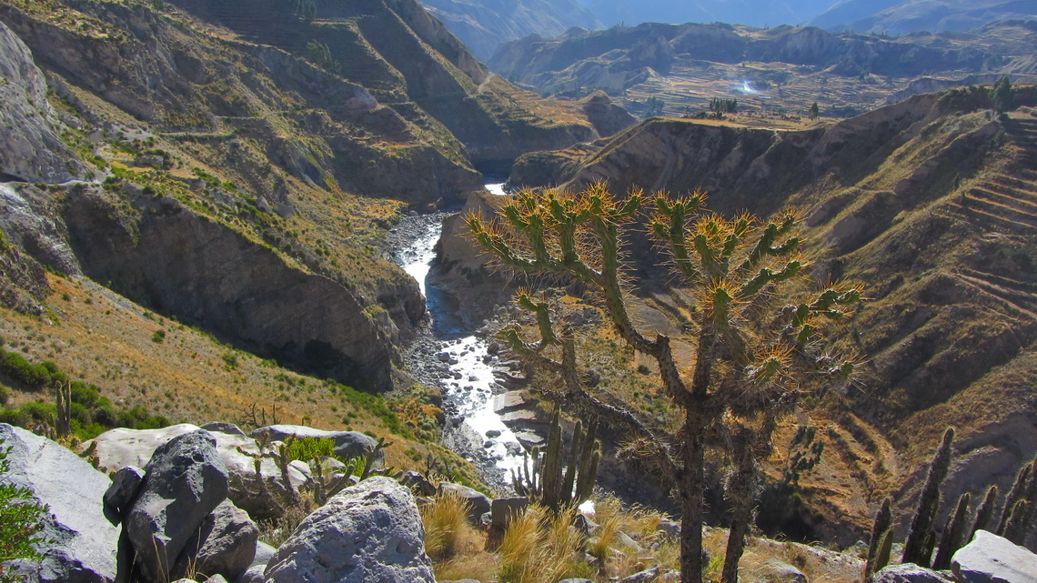 Colca Canyon few km East of Cruz del Condor