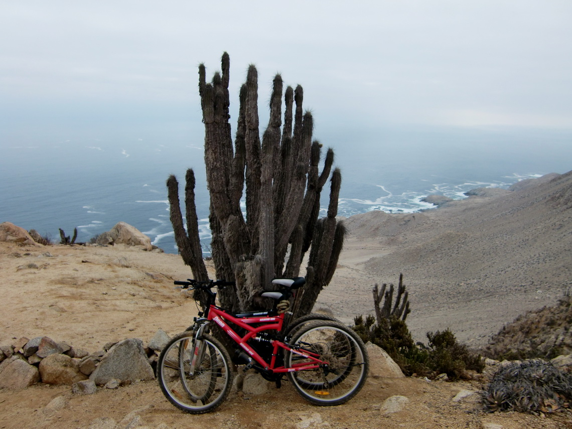 Our new mountain bikes 350 meters over the Pacific Ocean